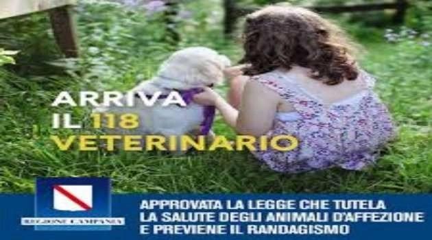 SOS animali: arriva anche in Campania il 118 veterinario