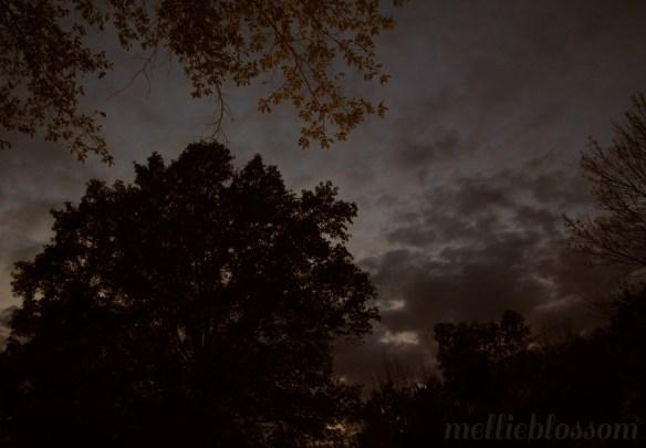 Moonrise - July Full Moon