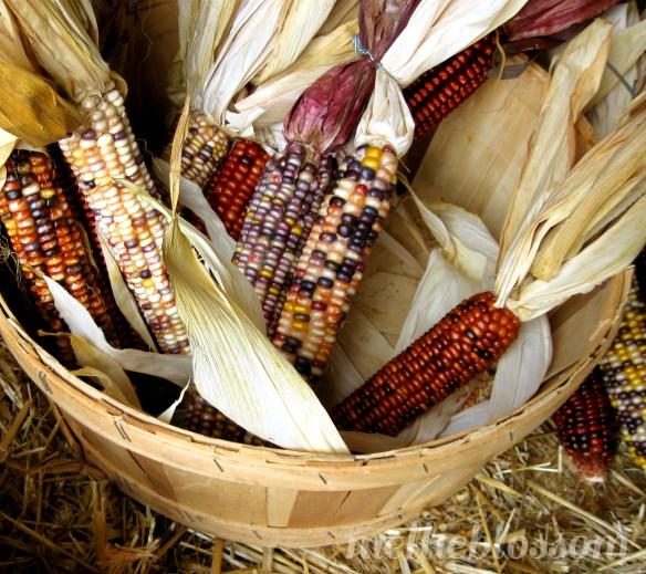 Love October - Harvest