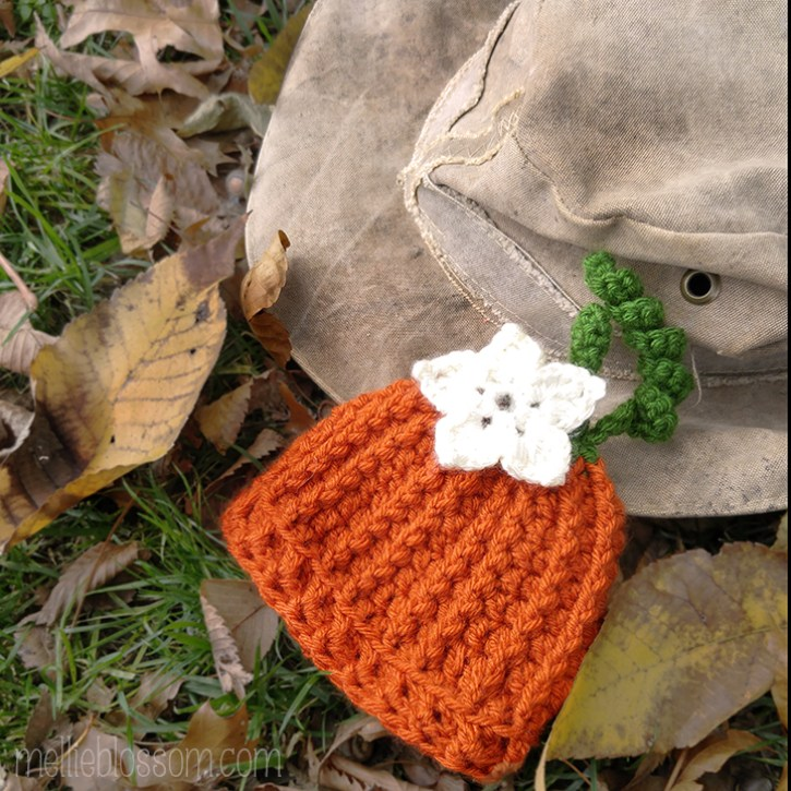 Crochet Pumpkin Hat - mellieblossom.com