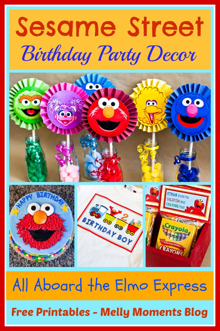 Sesame Street Elmo Themed Birthday Party