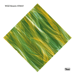 Wild Beasts - Stray - Artwork © Facebook