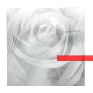 Skarlet's Walk - Transparency EP - Artwork