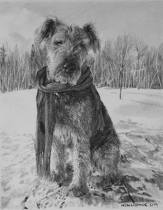 mstarkweather_suladogportraitdrawing_small