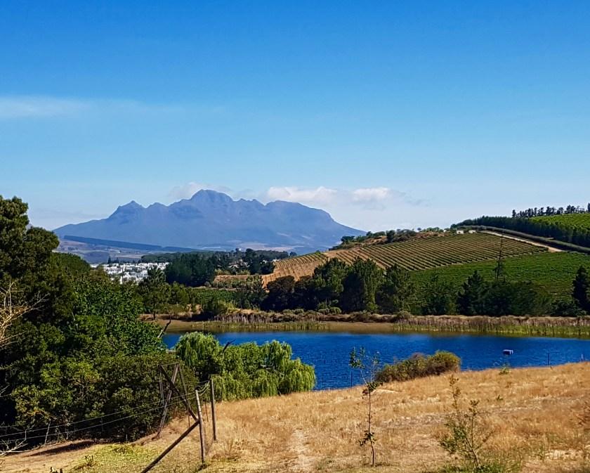Remhoogte Wine Estate Stellenbosch