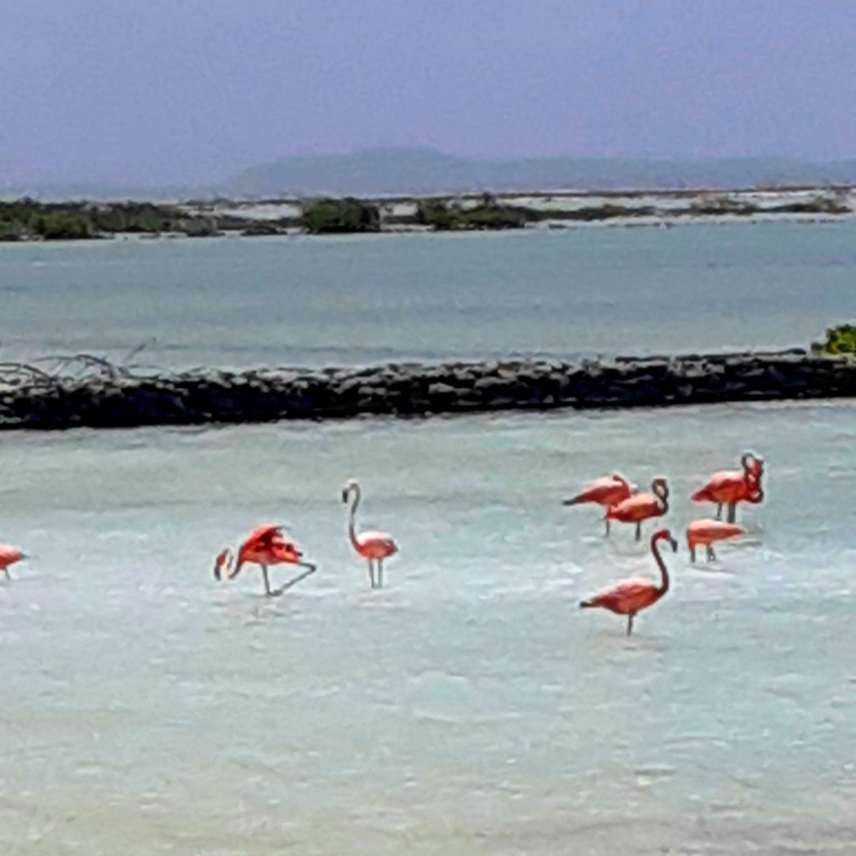 Bonaire for Hurricane Season