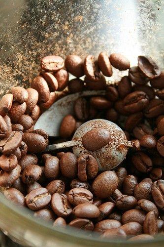 melopolitan-cafe-2