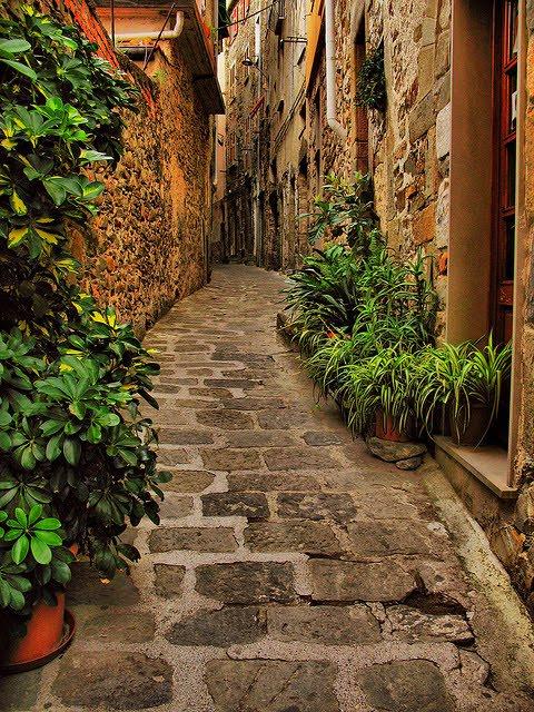 Narrow Street, Liguria, Italy