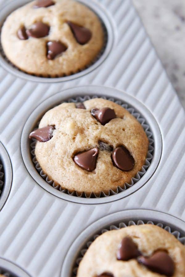 banana muffin with chocolate chips in muffin tin