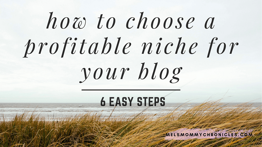how to choose a profitable niche