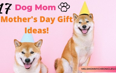 Dog Mom Mother's Day Gifts During Quarantine (Plus Other Gifts For The Cat Lover!)