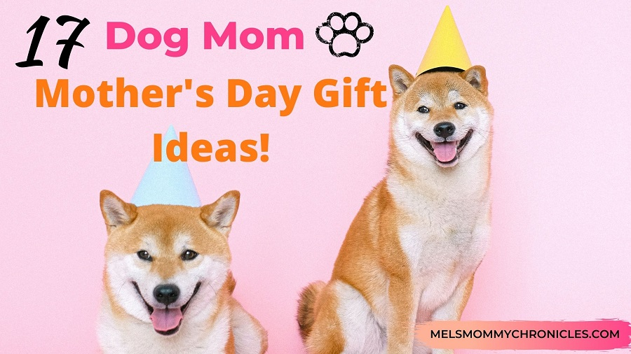 Dog Mom Mother's Day Gifts (Plus Other Gifts For The Cat Lover!)