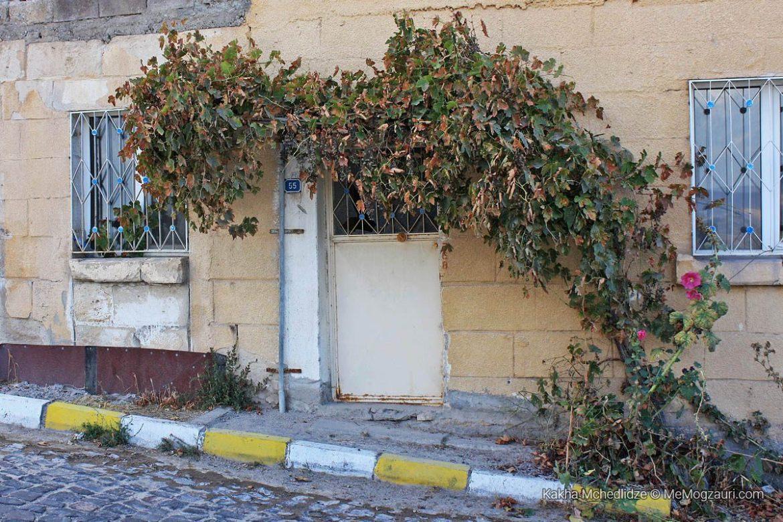 კაბადოკიური ღვინო და მევენახეობა - მე მოგზაური