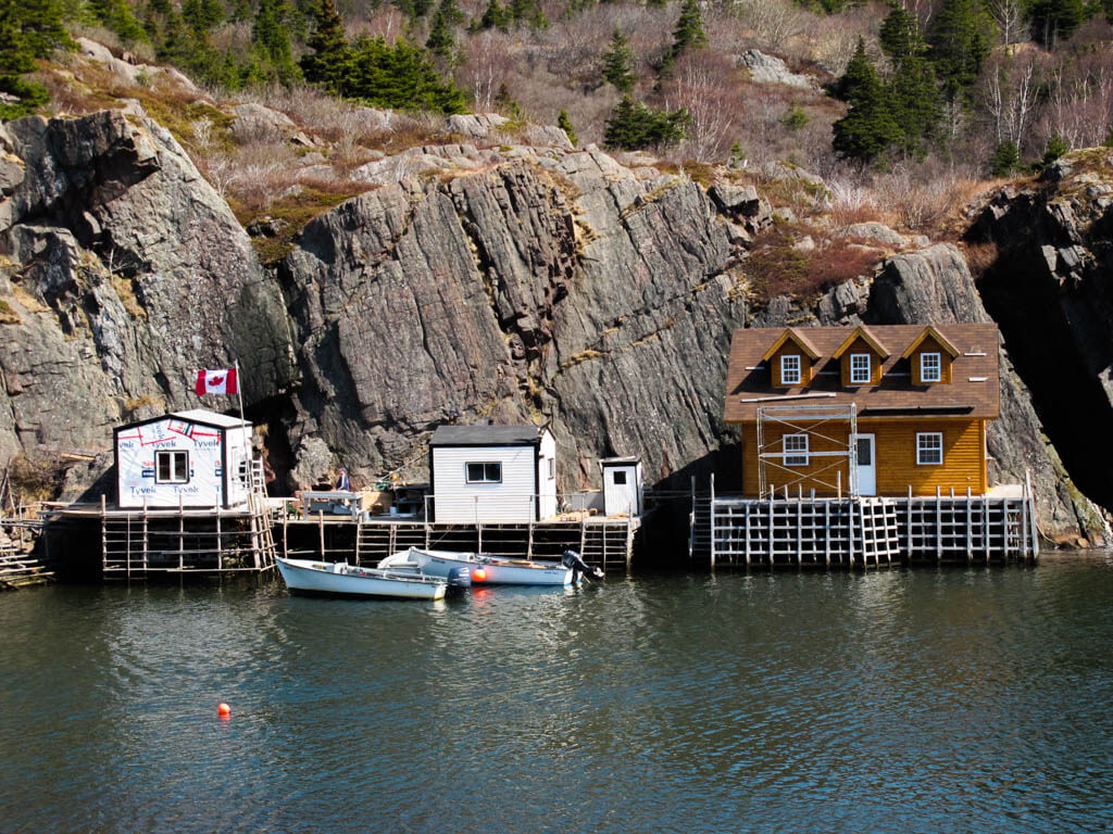 Small houses on the cliffs in Quidi Vidi Village