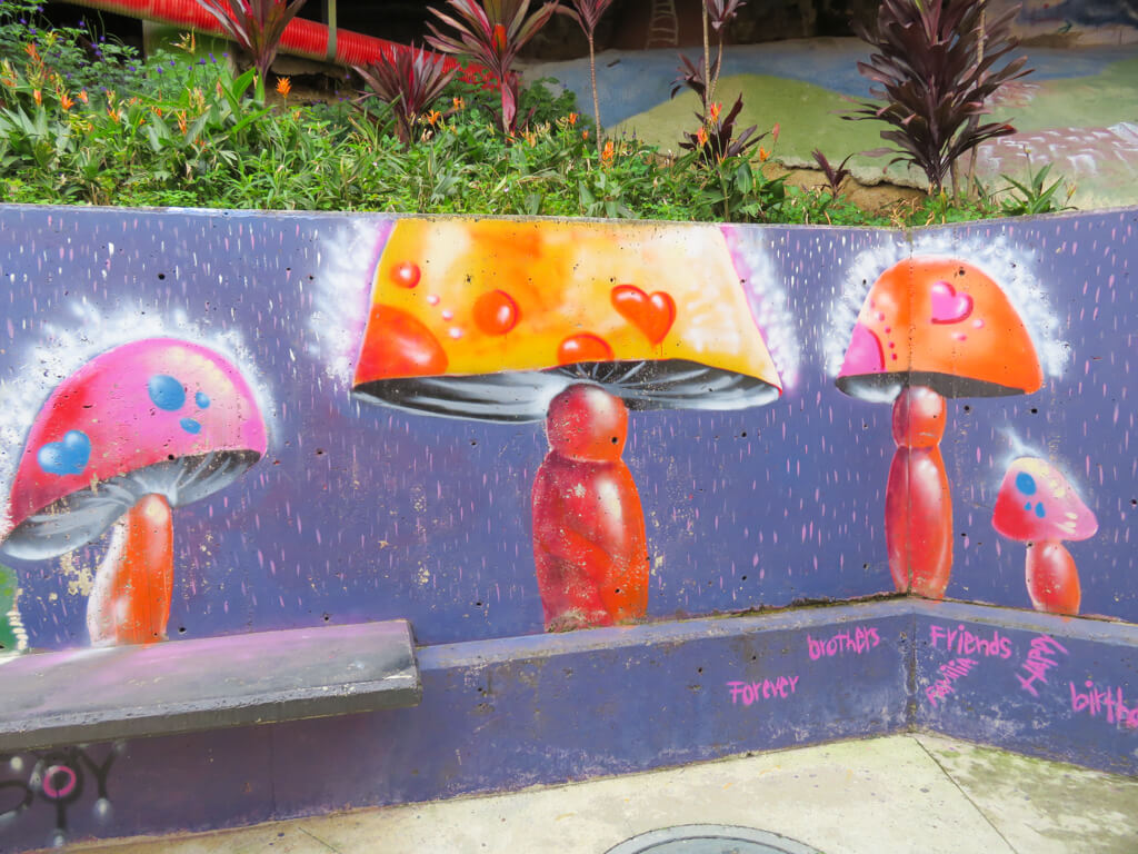 Paintings of mushrooms in Comuna 13