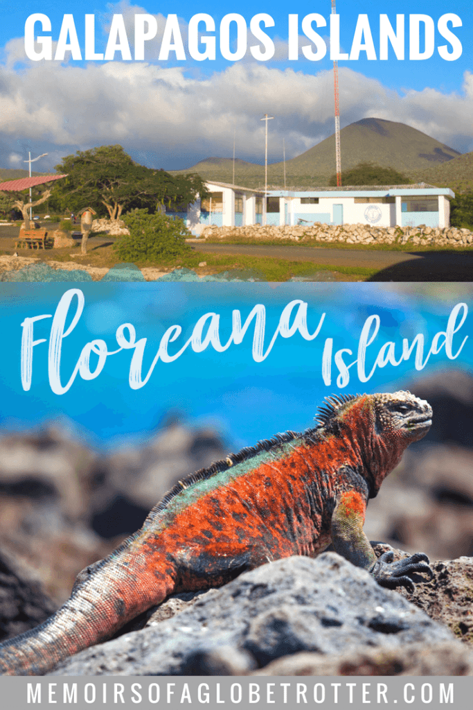 Floreana Island in the Galapagos has a fascinating history involving pirates and mysterious disappearances. Today it has interesting attractions like the Post Office Barrel, Black Beach and pirate caves.