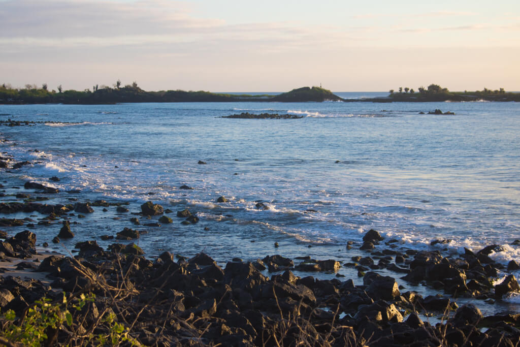 La Loberia on Floreana Island in the Galapagos is an excellent spot for snorkeling