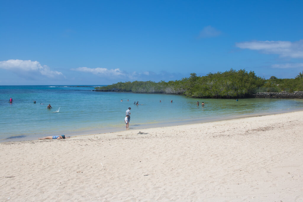 Playa de los Alemanes is a sandy beach along the path along the way to Las Grietas on Santa Cruz Island in the Galapagos