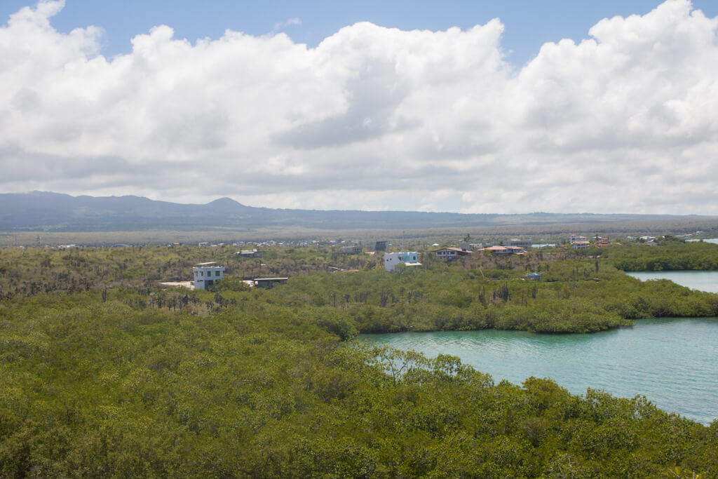View of Academy Bay from the top of the trail near Las Grietas on Santa Cruz Island