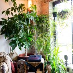 How To Achieve The Bohemian Look Read For Interior Design
