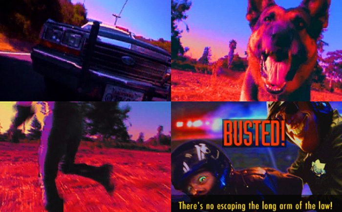 Road Rash 3DO BUSTED
