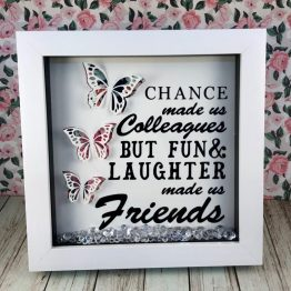 IMG 1249 e1539957908928 - Friends Butterfly Frame