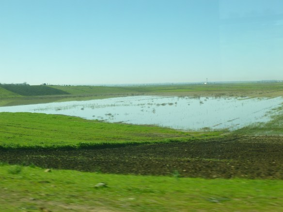 This year has brought an abundance of rain to the farm lands in Morocco.