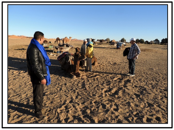 Hicham took out to the camels, and made arrangements with out guide.