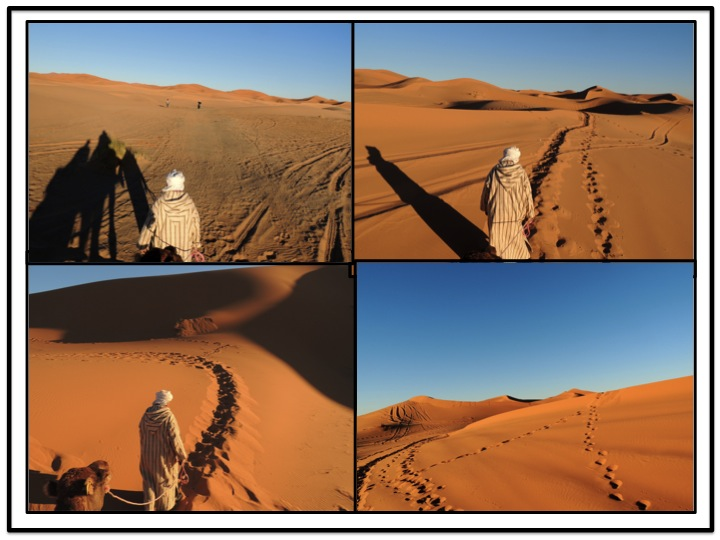 I took just too many pictures that look basically the same, but here are four of them with our guide leading our small caravan to the west.  By now the sun was starting to set, and our shadows were getting longer.
