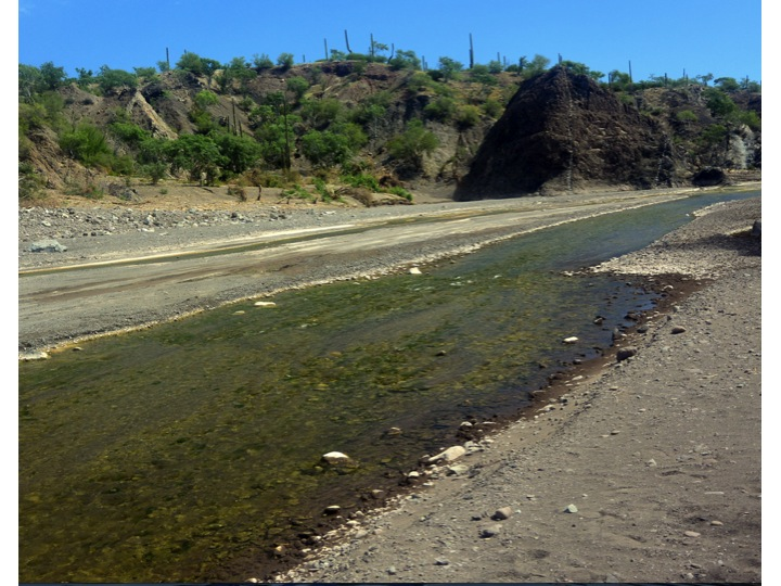 This is the main river normally dry flowing out of the mountains passing on the south side of Loreto.  There was still some water in the river as we walked through the river bed.