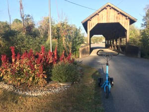 Blue Me-Mover with covered bridge and red flowers and landscaping in the background