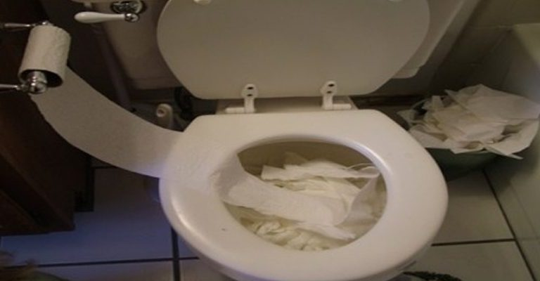How to Unclog a Clogged Toilet Bowl?
