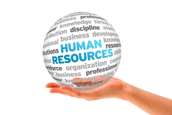 The Purpose of Portal HR in Dubai | MenaITech
