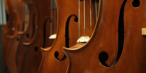 four violins hanging on wall