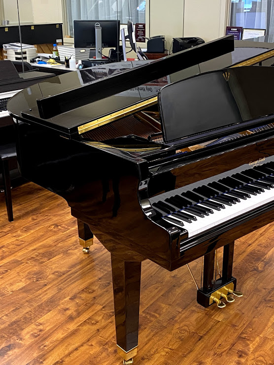 Left Side George Steck grand piano