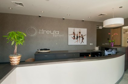 The Freyja Project