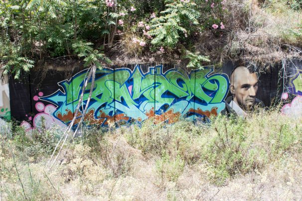Impressive graffiti found on way to botanical gardens