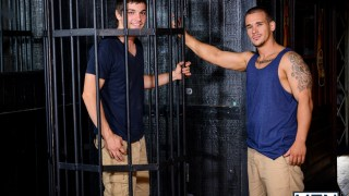 Minet soumis dans une cage pompe un lascars