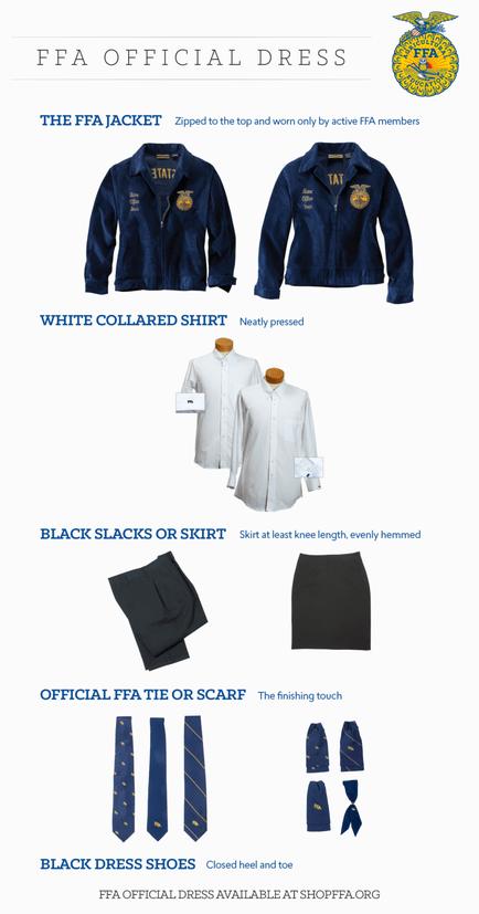 Ffa Official Dress Scarf