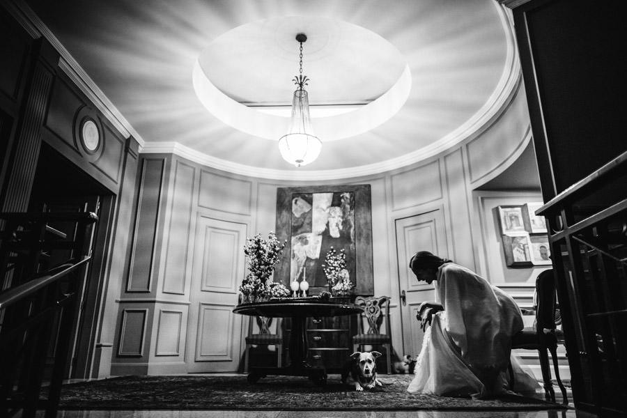 fotografia de casamento noiva e o seu cao
