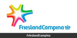 FrieslandCampina Hong Kong wins two bronze awards in the 15th Stevie International Business Awards