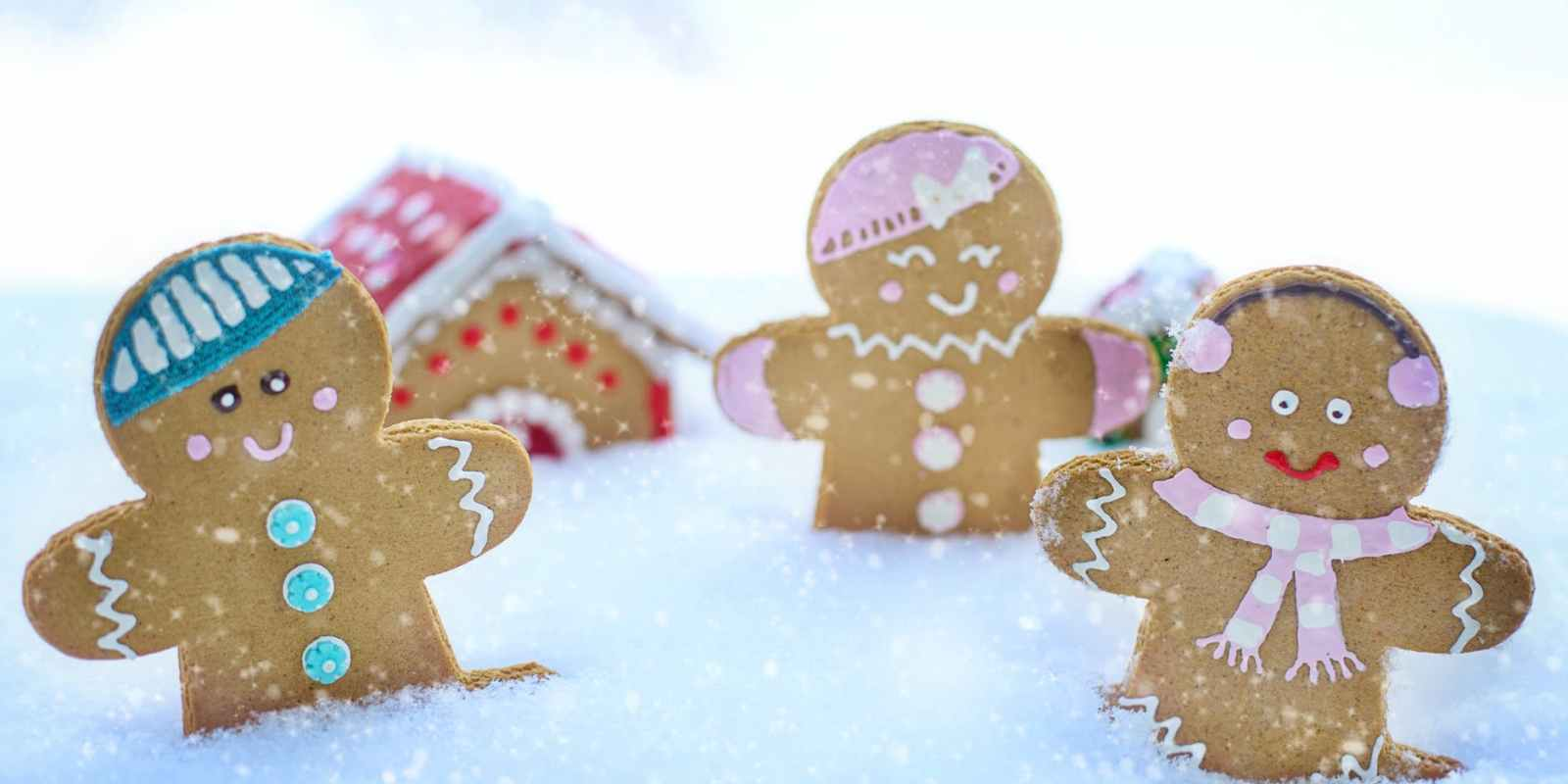 close up photo of gingerbread cookies