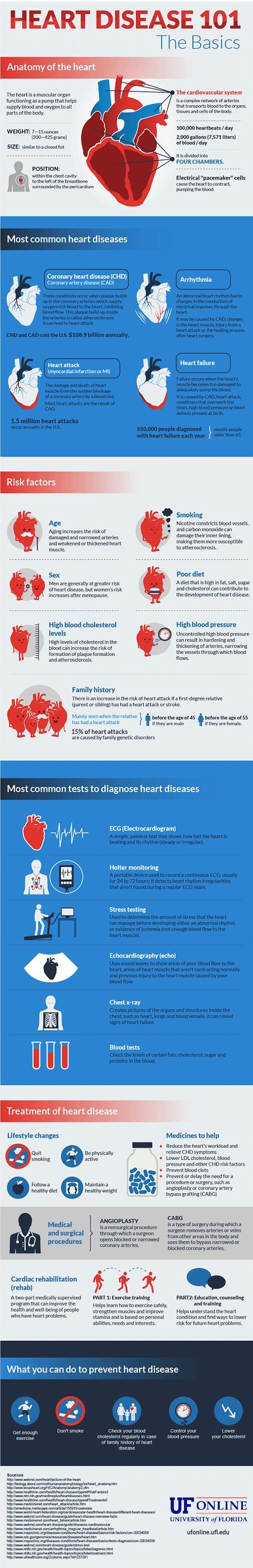 heart-disease-101-the-basics