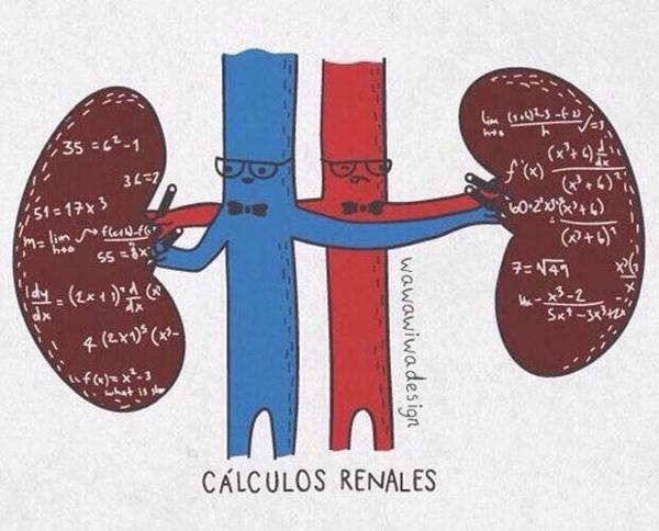 Los cálculos renales aparecen con más frecuencia cuando hace calor