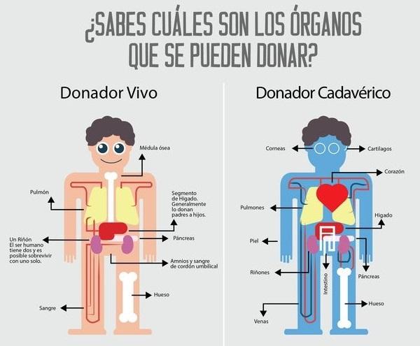 prostatitis y donación de sangre 2