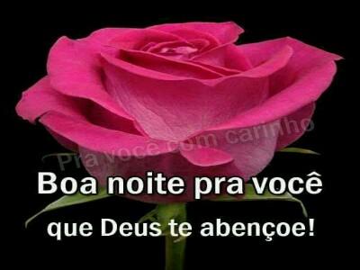 Mensagem Boa Noite Com Rosa Vermelha Mensagens De Bom Dia