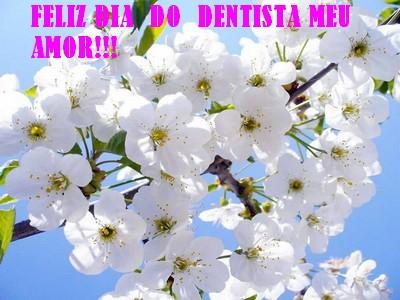 feliz dia do dentista amor da minha vida