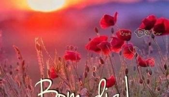 Frases Bom Dia Bem Humorado Com Felicidade Mensagens De Amor Com