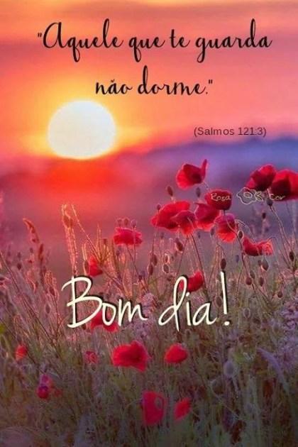 bom dia com muita alegria paz amor no coração frases