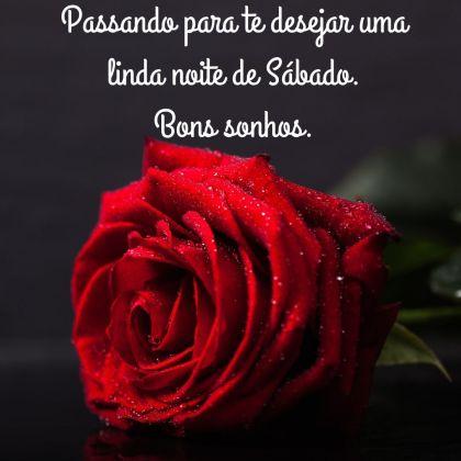 boa noite sabado com rosas